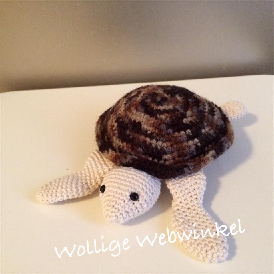 Zeeschildpadje 4