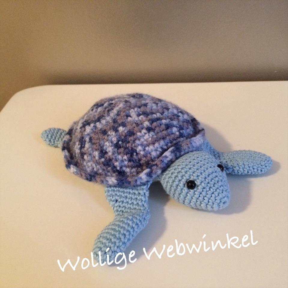 Zeeschildpadje 2